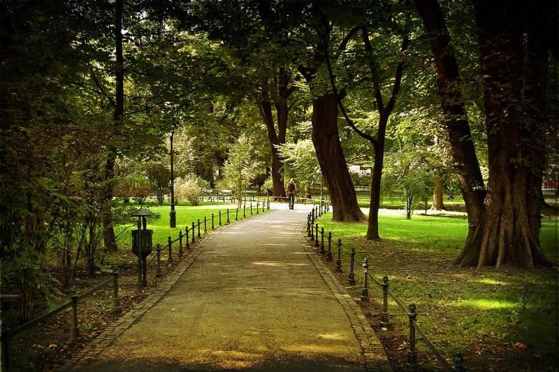 parque Cracovia