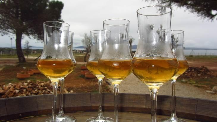bebidas en croacia